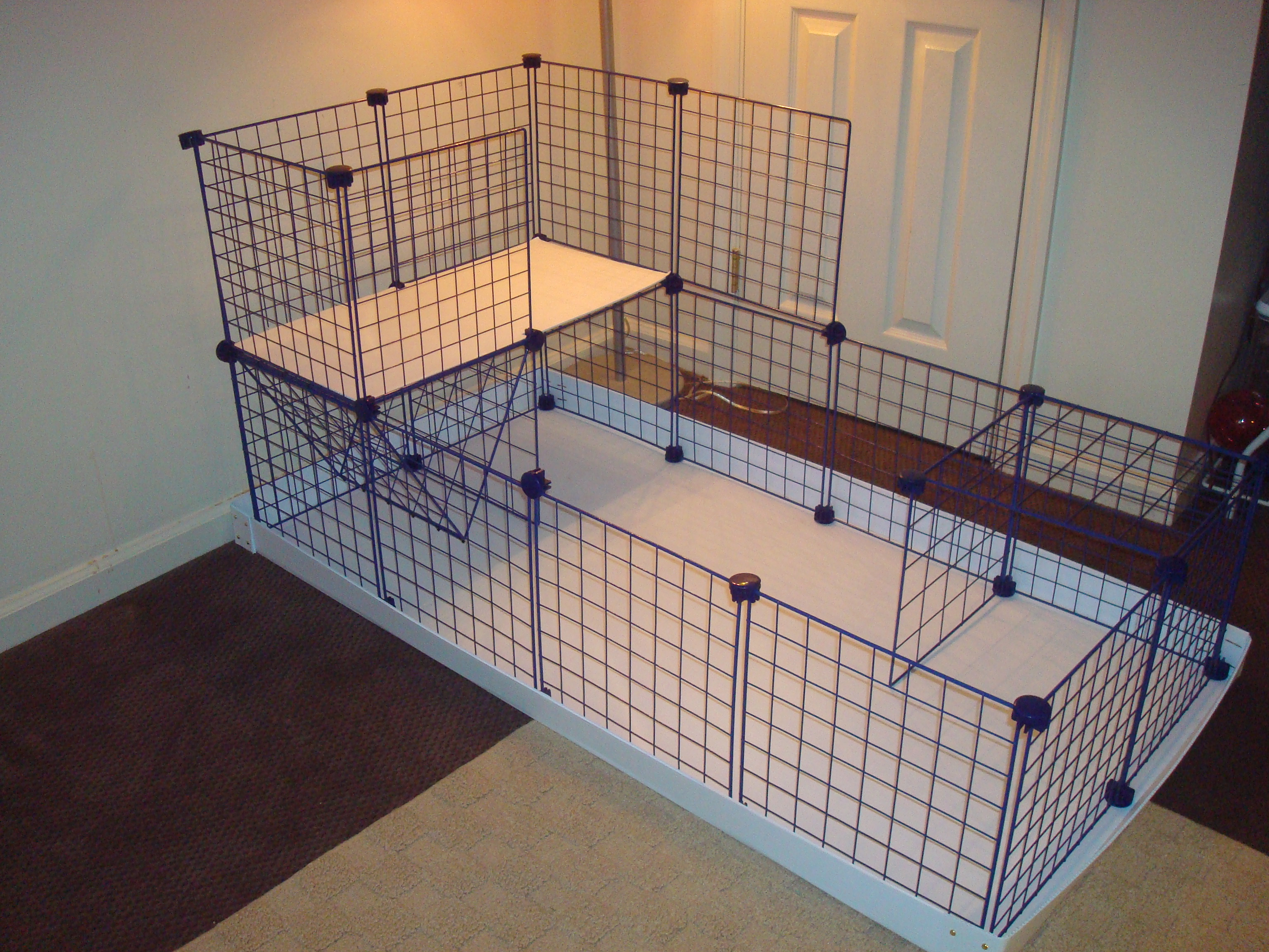 Piggy confetti for Diy c c guinea pig cage